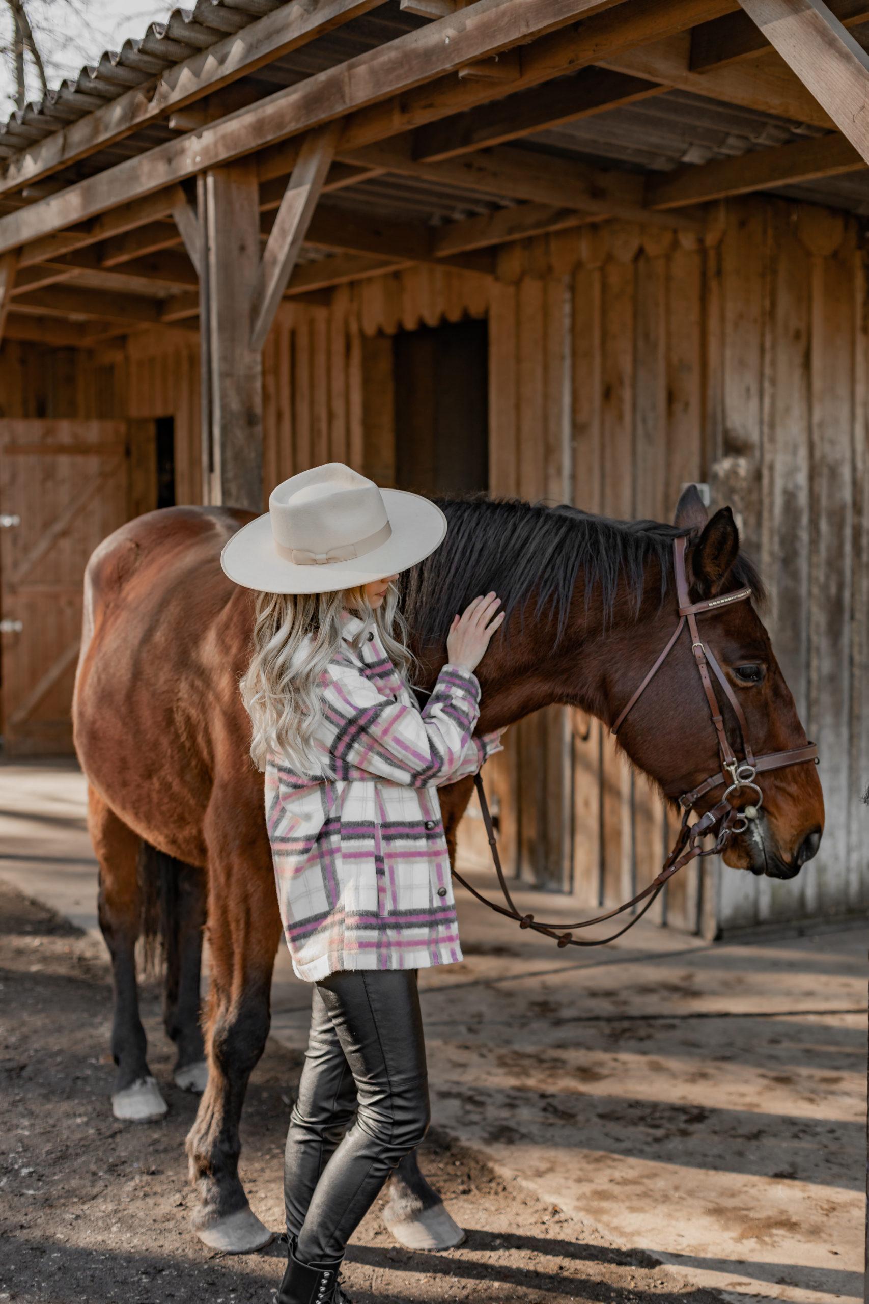 Un petit tour à cheval