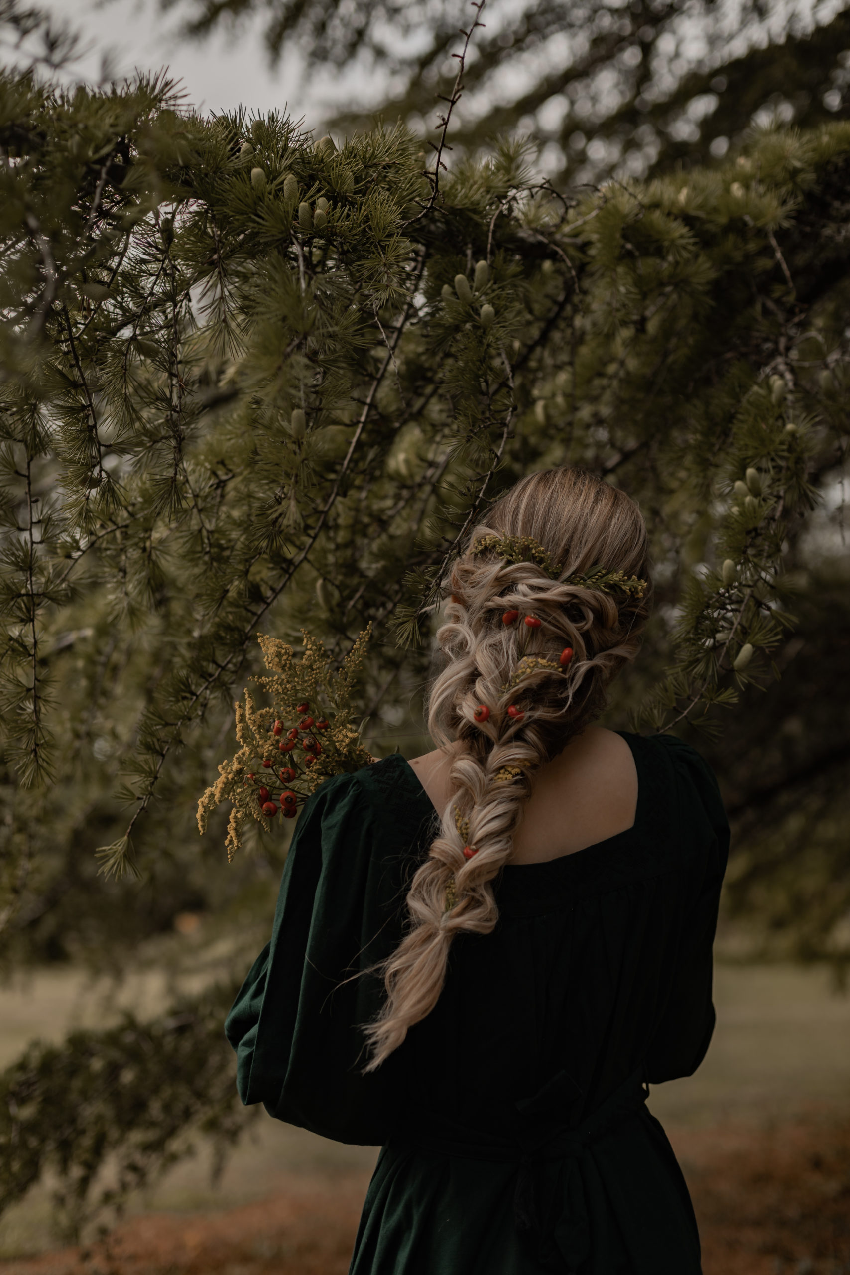 Tresse & robe brodée
